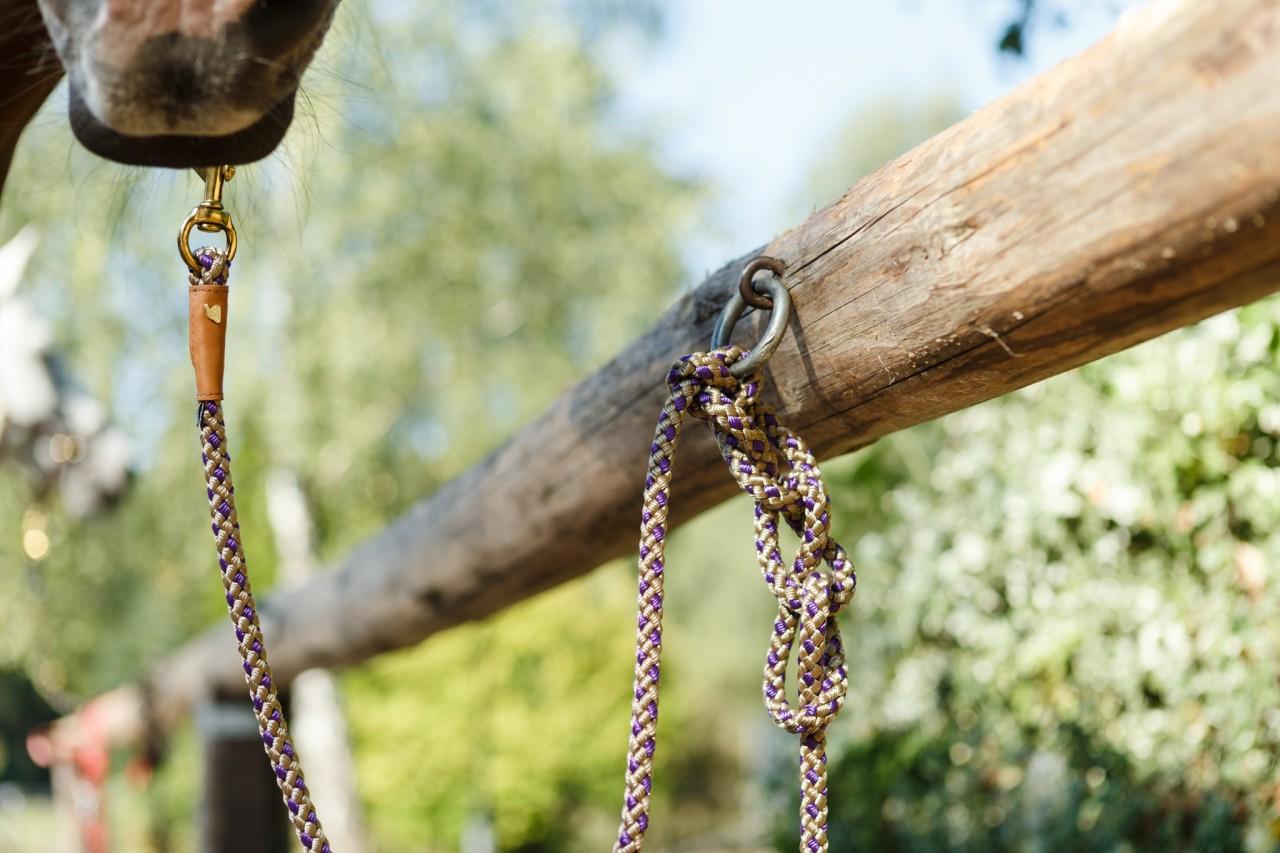 Outdoor Führstrick lila/beige