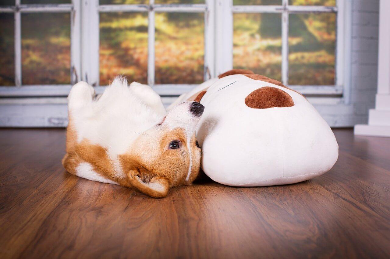 Ankuschelhund Tomte Spielzeug
