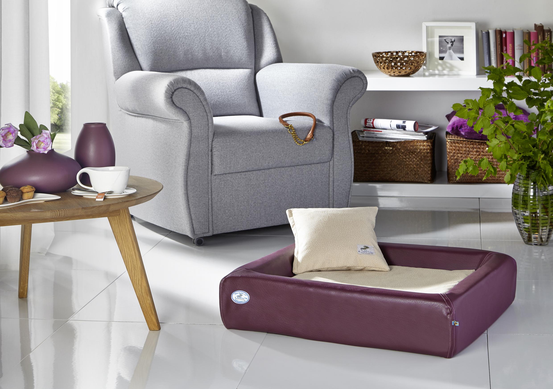 test kudde comfort farbe brombeer gr e kudde gr 5. Black Bedroom Furniture Sets. Home Design Ideas