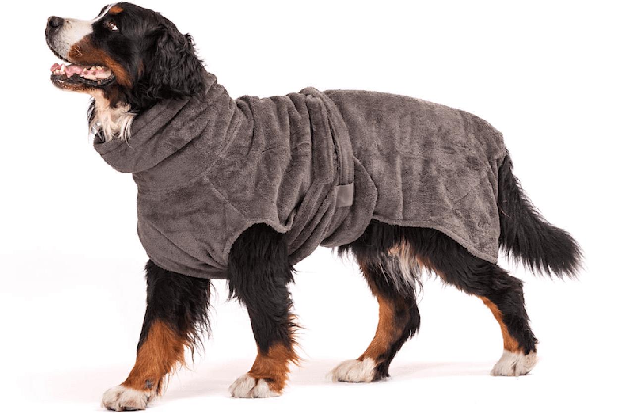 Hund mit Bademantel